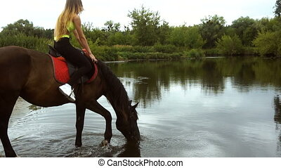 charming young girl sits astride a horse that drinks water...