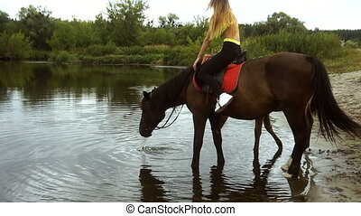 Brown horse with a rider stands in lake and drinking water -...