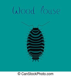 flat illustration on background wood louse - flat...