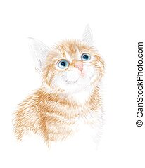 Little kitten the red marble coloring.  Ginger fluffy kitten. Portrait oh the cat. House pet. Suitable for t-shirt design