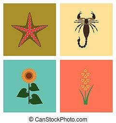 assembly flat Illustrations tropical starfish Scorpio...