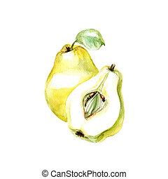 Pear - Watercolor Pear. Hand Drawn Illustration Organic Food...