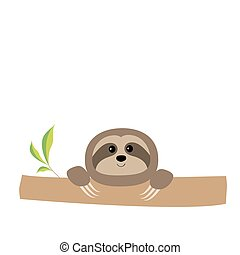 Sloth face and hands. Cute cartoon character. Tree branch...