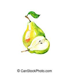 Pear - Watercolor Fresh Pear. Hand Drawn Illustration...