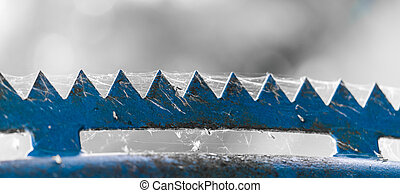 weathered blue zigzag top of a fence covered by a cobweb