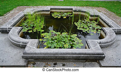 Garden - A man made pool with waterplants.