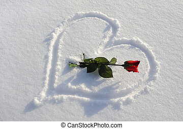 rose and heart in snow - red rose and heart written in...