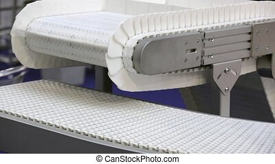 Conveyor Belt Transport System in Distribution Warehouse