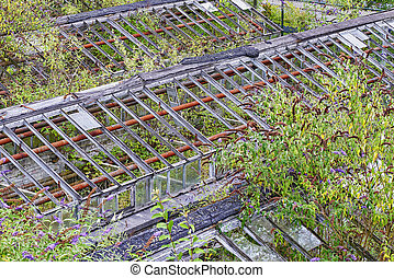 Abandoned greenhouses with lot of lush foliage, view from...