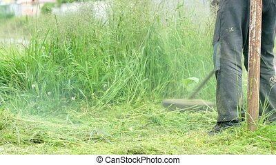 Gardener cuts a grass using a lawnmower outdoors. Working...