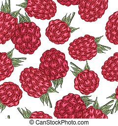 Hand drawn sketchy berries. Ripe raspberry branch isolated on white. Seamless pattern vintage. Vector illustration