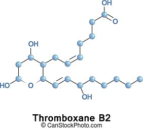 Thromboxane B2 is an inactive metabolite of thromboxane A2....