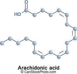 Arachidonic acid omega-6 fatty acid - Arachidonic acid is a...