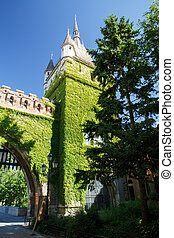 Tower and gate of Vajdahunyad Castle, Budapest Hungary -...
