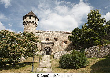 Entrance to the medieval fortress in Buda Castle in...