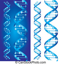 Blueprint DNA chains on blue and white background