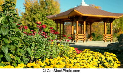 wooden gazebo in park - wooden gazebo in backyard garden