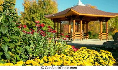 wooden gazebo in park - wooden gazebo in backyard garden