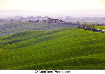 Typical Tuscan landscape - typical Tuscan landscape - a view...