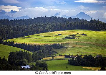 Beautiful mountain landscape at the Tatry. Zakopane, Poland