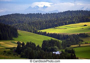 mountains Tatry at the Zakopane - Beautiful mountain...