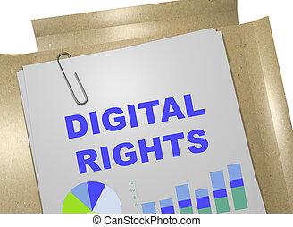 Digital Rights concept - 3D illustration of 'DIGITAL RIGHTS'...