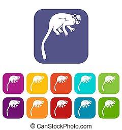 Marmoset monkey icons set flat - Marmoset monkey icons set...