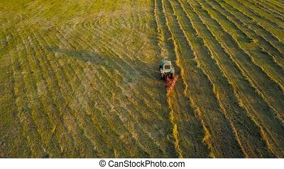 Tractor performs agricultural work on the field at sunset...