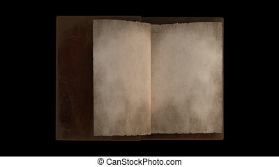 Animated turning pages in old book portrait with alpha...