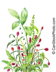 watercolor burnet - burnet, lily of the valley, stone...