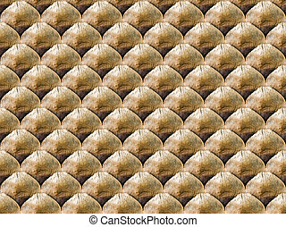 Cone scale seamless background. - Cone flaky seamlessly...