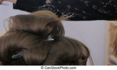 Professional hairdresser doing hairstyle for young pretty...