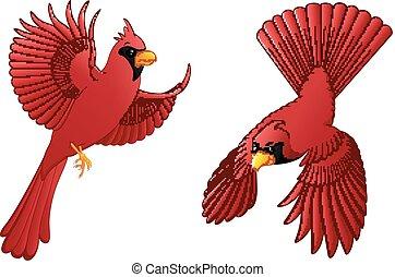 Cardinal cartoon set