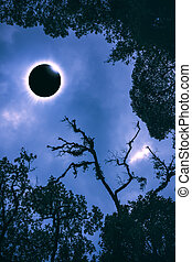 Scientific natural phenomenon. Total solar eclipse with...