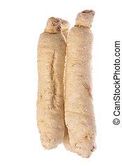 Sugar Ginseng Roots Macro Isolated - Isolated macro image of...