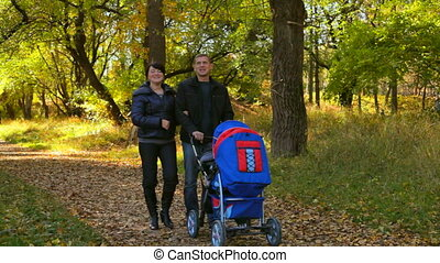 young family with a stroller - young family walks in the...
