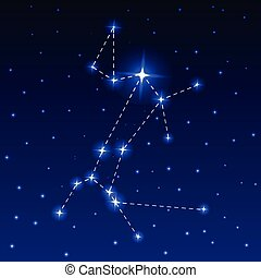 The Constellation of the Big Dog in the night starry sky....
