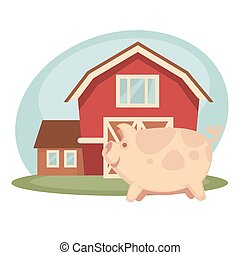 Pig standing on farm