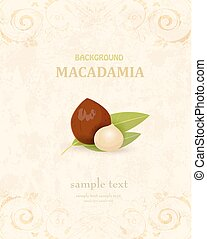 vintage banner with macadamia for your design