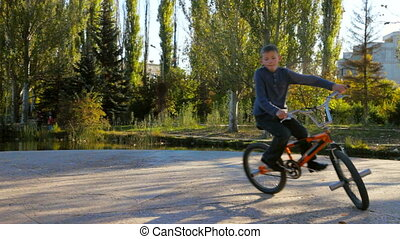 boy Riding his Bike - little boy riding his bike on a sunny...