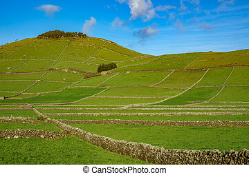 Farm fields hill in the Terceira island in Azores - Hill of...