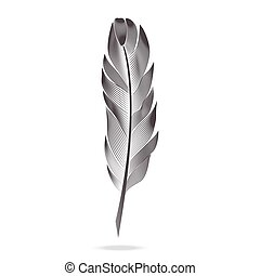 Black and white feathers. Vector graph contour