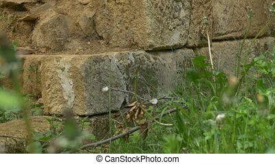 Stone Blocks Wall Ruins in Forest - Ancient Dacian fortress...