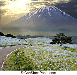 imageing of beautiful landscape of the sky and the ground...