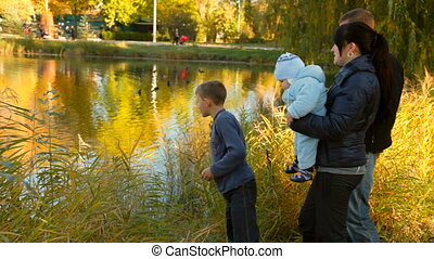 family near a pond - family in a park near a pond