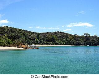 Zealand, 中で, 湾, ボート, 新しい, 浜, 島