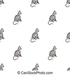 American Shorthair icon in cartoon style isolated on white...