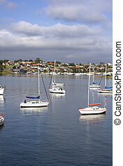 Boats at Birkenhead Point, Sydney