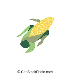 Vector corn cereal flat illustration isolated