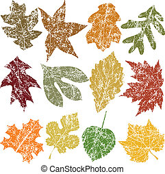 Twelve Grunge Leaves - Twelve Grunge Fall Leaves